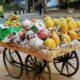 assorted fruits on fruit rack