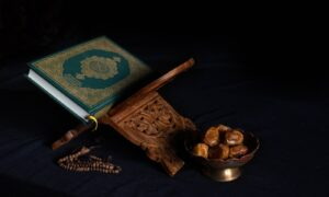 blue book beside brown wooden stick