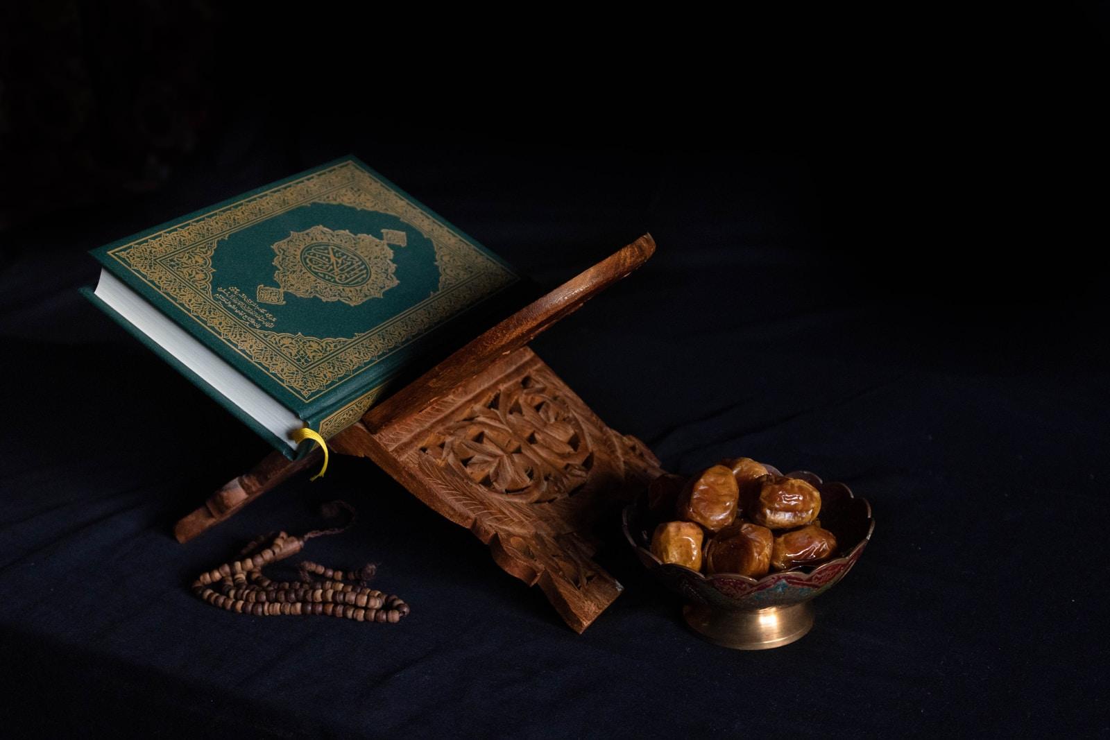 blue book beside brown wooden stick
